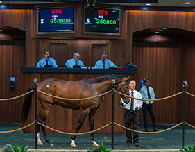 OBS April 2015 Friday session,fri ring; 96810.0F     YesbyjimminyDiplomatic AngelBlue River Bloodstock, AgentBoomer Bloodstock, Agent210,000;972 21.2C     Keyed EntryDixie ImageH. J. Parra Racing StablesMichael Machowsky, Agent130,000; 978